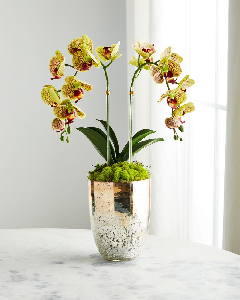 T&C Floral Company Double Orchid in Champagne Gold Glass
